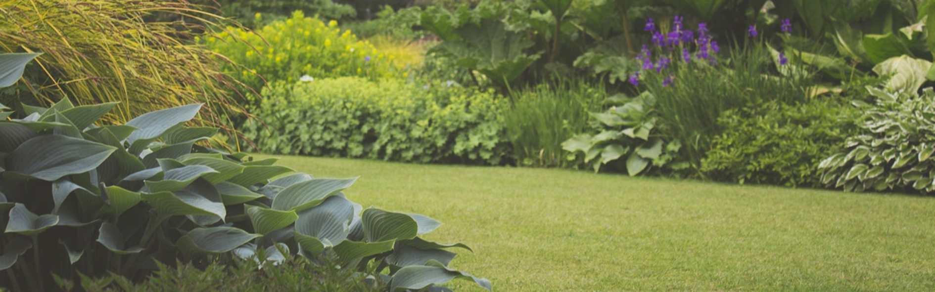 Cómo diseñar un jardín a través de estos sencillos pasos