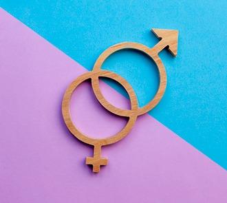 Estudiar la Maestría Internacional en Igualdad de Género + Maestría Internacional en Prevención de la Violencia de Género