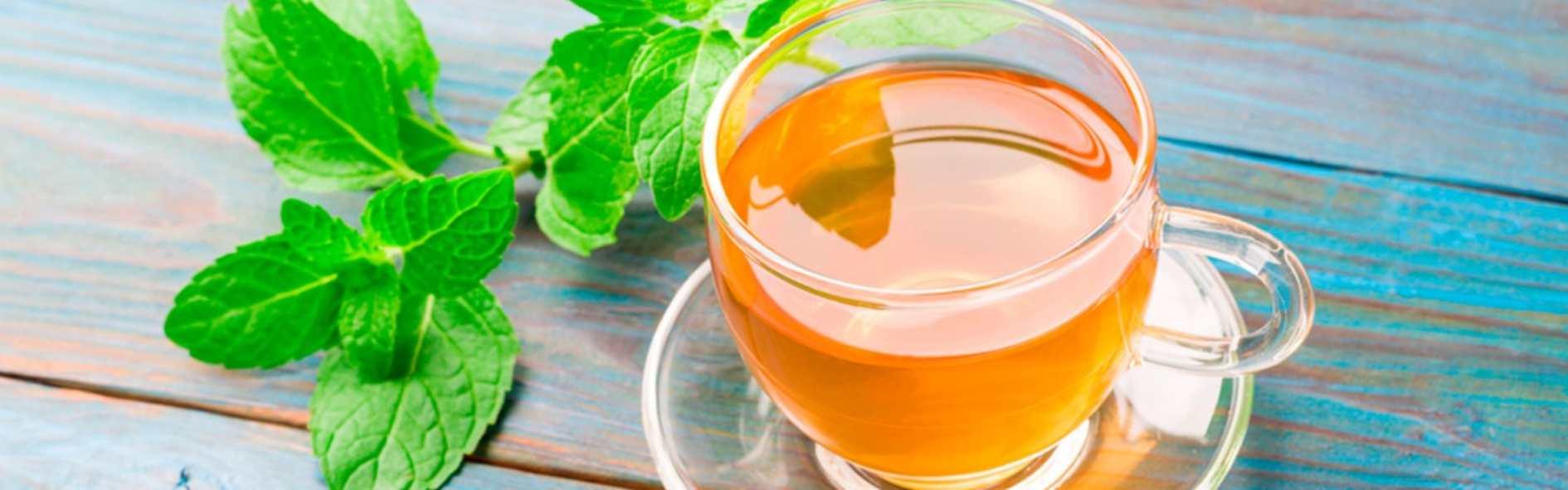 El té digestivo, ideal para prevenir las digestiones pesadas durante las fiestas navideñas